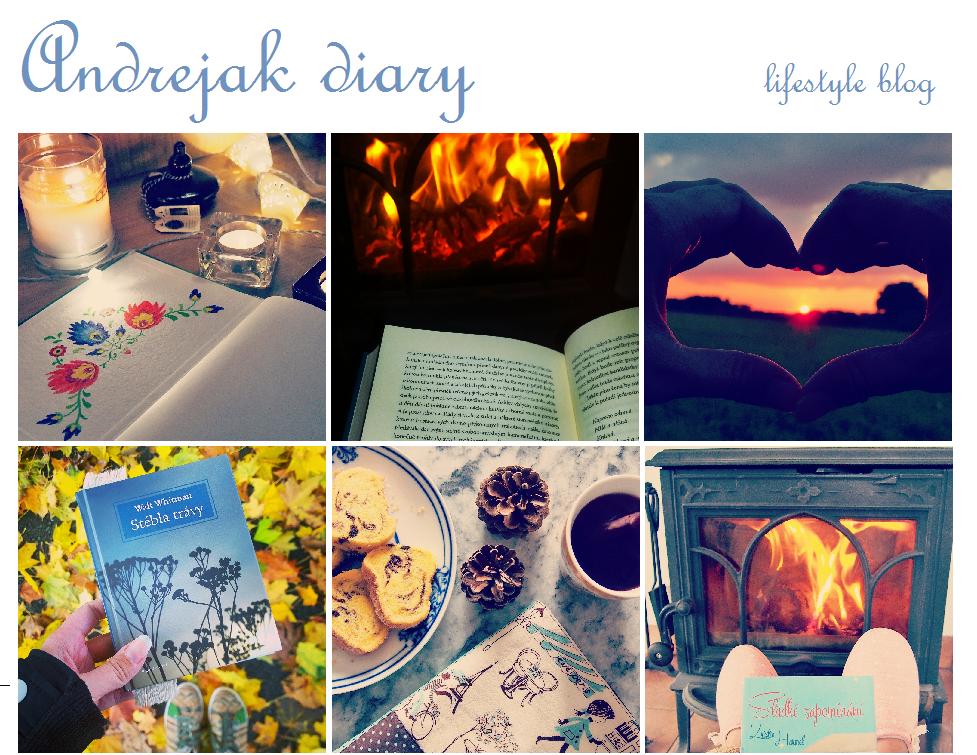 Andrejak diary