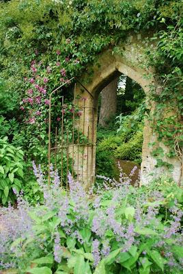 Inspire bohemia garden inspiration part i for Beau jardin bath rocks