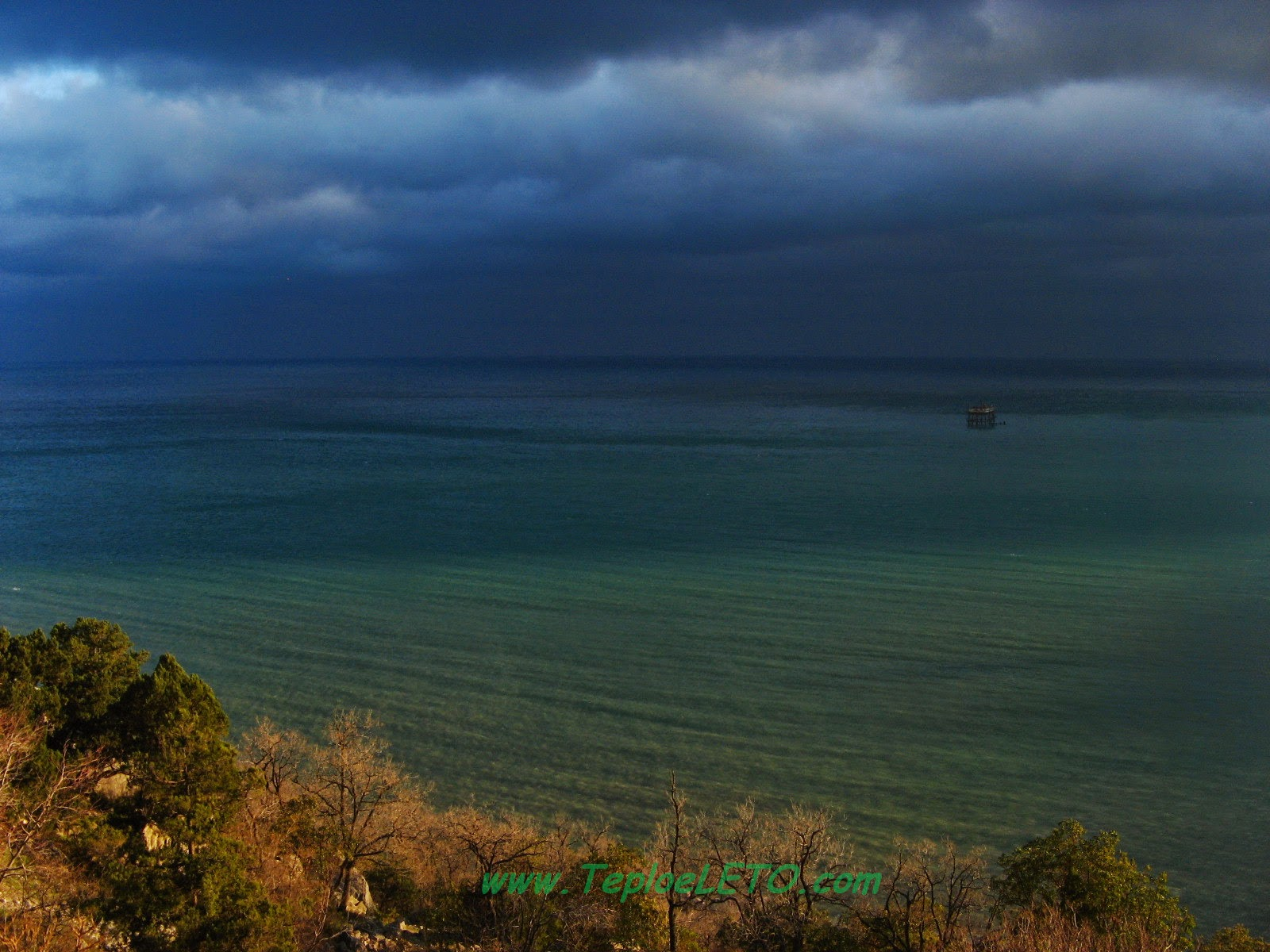 Фото - Природа Крыма. Симеиз