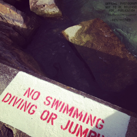 No swimming. No diving. No Jumping. No duh.