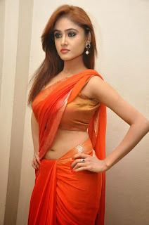 Actress Sony Charishta  Pictures in Saree at Naakaithe Nachindi Audio Launch Function  0065