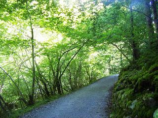Sobrescobio, Ruta del Alba, sendero