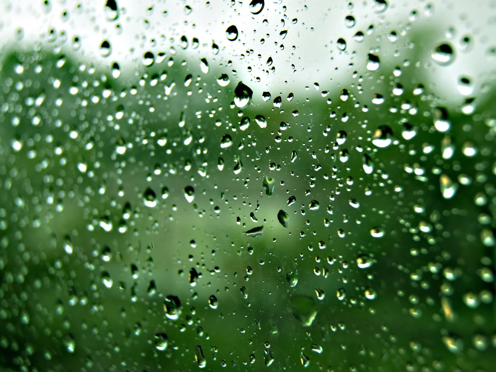 wallpapers rain drops on glass wallpapers