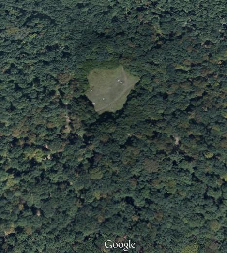 Keajaiban Dunia Hutan Hoia Baciu Misteri Dua Dunia