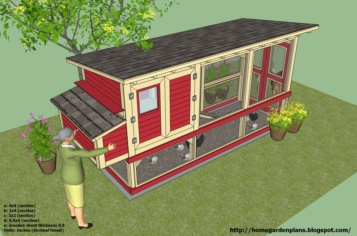 Coop Chikens Learn Chicken Coop Design For 8 Hens