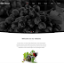 Exquisite Wine Website Template #53813