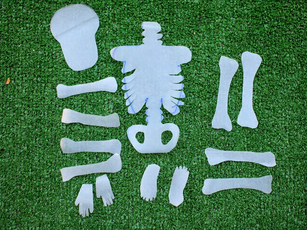 cut out bones from milk jugs
