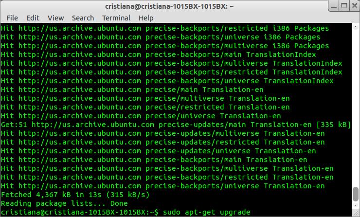 Zorin OS Terminal upgrade
