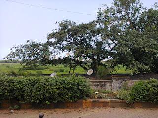 Mahalaskhmi area
