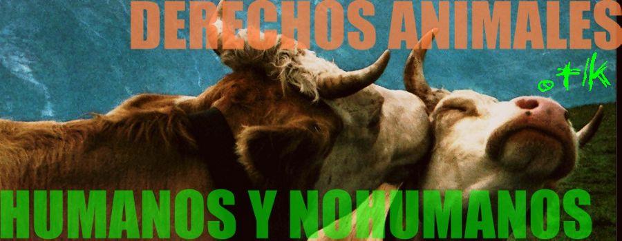 SinUsarAnimales.org - Derechos Animales Humanos y Nohumanos