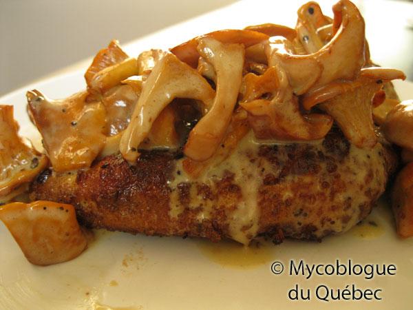 Le mycoblogue du qu bec poulet pan aux pleurotes sauce - Cuisiner la chanterelle ...