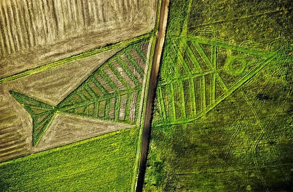 Draw a crop circle at the border between Poland and Ukraine
