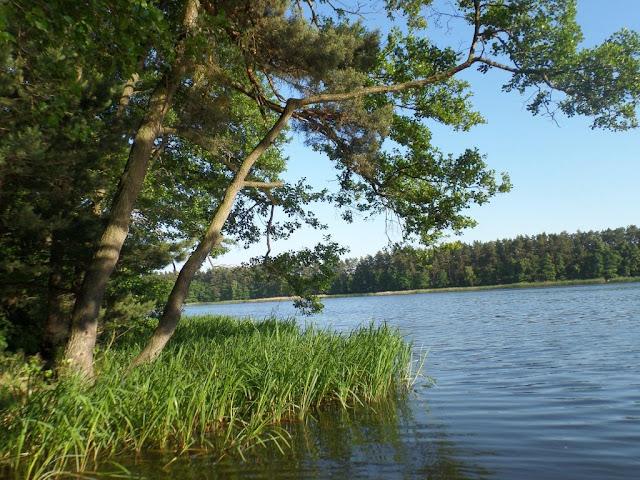 Poznajcie nasze okolice - Jezioro Hajka