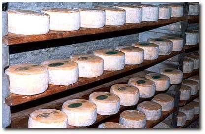 итальянский сыр