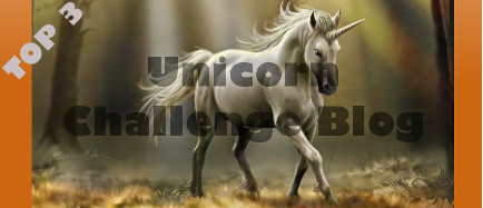 7 augustus 2018 3e in top 3 bij Unicorn challenge