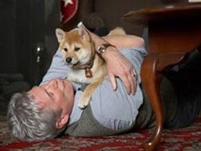 Caso lembra o filme 'Sempre ao seu lado' com o ator Richard Gere (Foto: Reprodução)