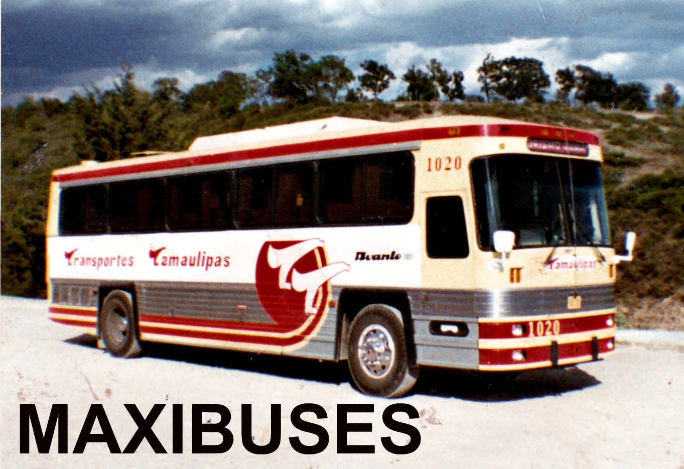 Autobuses de dina fotografias 59