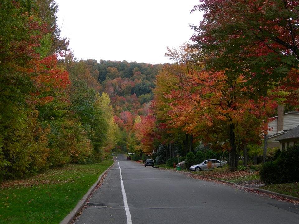 Cor do outono.