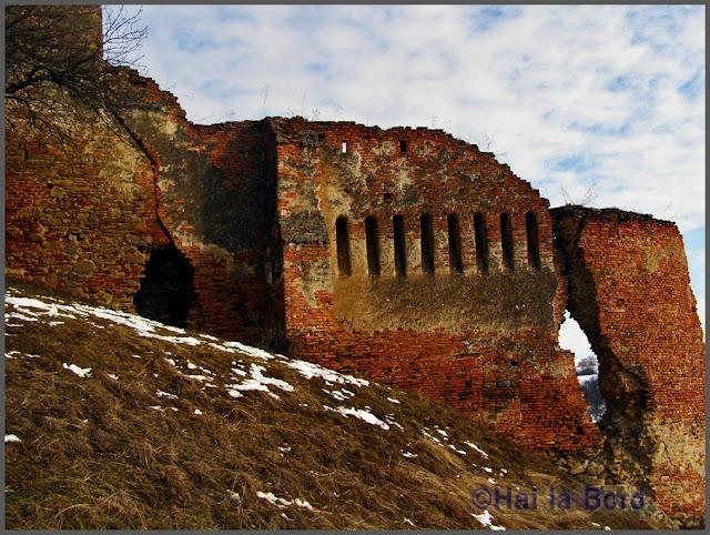 ruine cetate slimnic ianuarie 2007