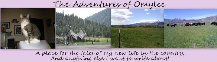 The Adventures of Omylee