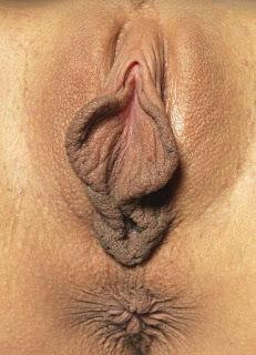 wet pussy - rs-DominikaCButterfly_030510_014xxxl-713223.jpg