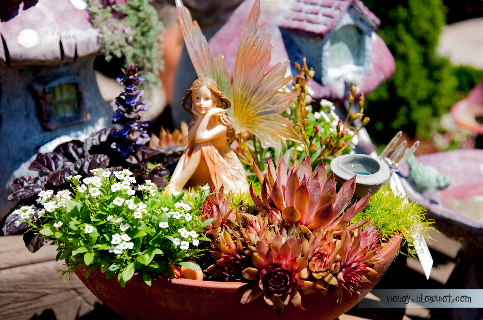 The Green Gardener Fairy Gardens