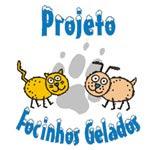 PROJETO FOCINHOS GELADOS