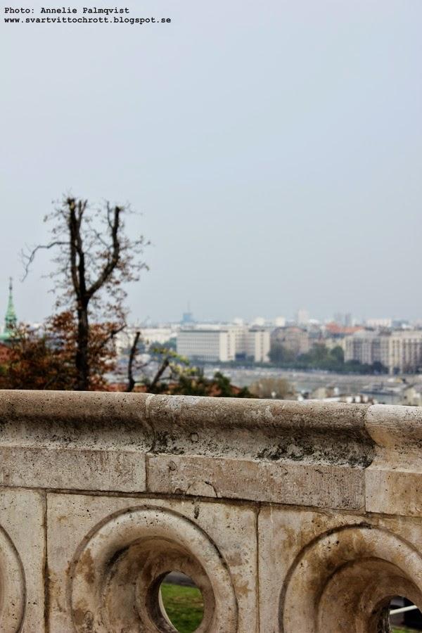 budapest, utsikt, vy över staden