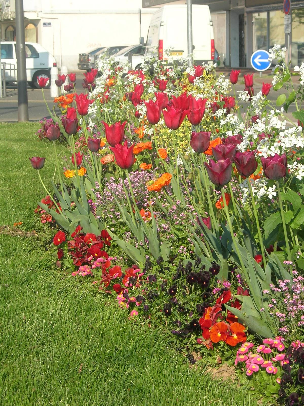 composition florale au jardin fleurissements printemps. Black Bedroom Furniture Sets. Home Design Ideas