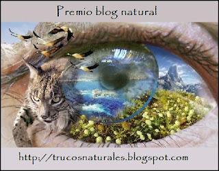 blog natural