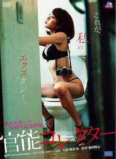 Eros Photographer: Rin Sakuragi (2010) DVDRip XViD