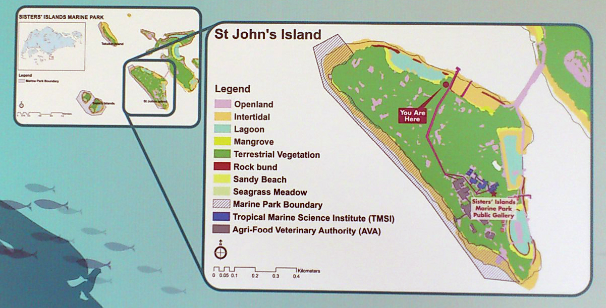 and rightly so because st johns island is also full of amazing marine life heres blog posts of our past surveys at st johns island