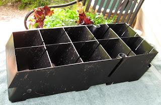 Seattle Garden Ideas A Living Salad Wall