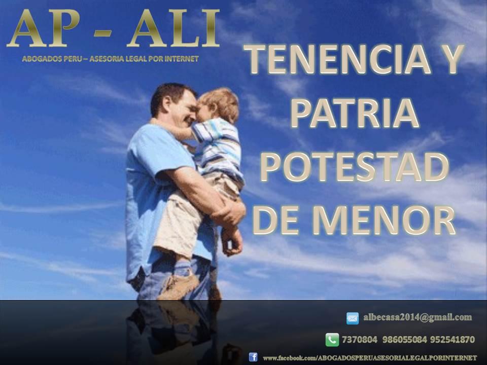 TENENCIA Y PATRIA POTESTAD DE MENOR DE EDAD.