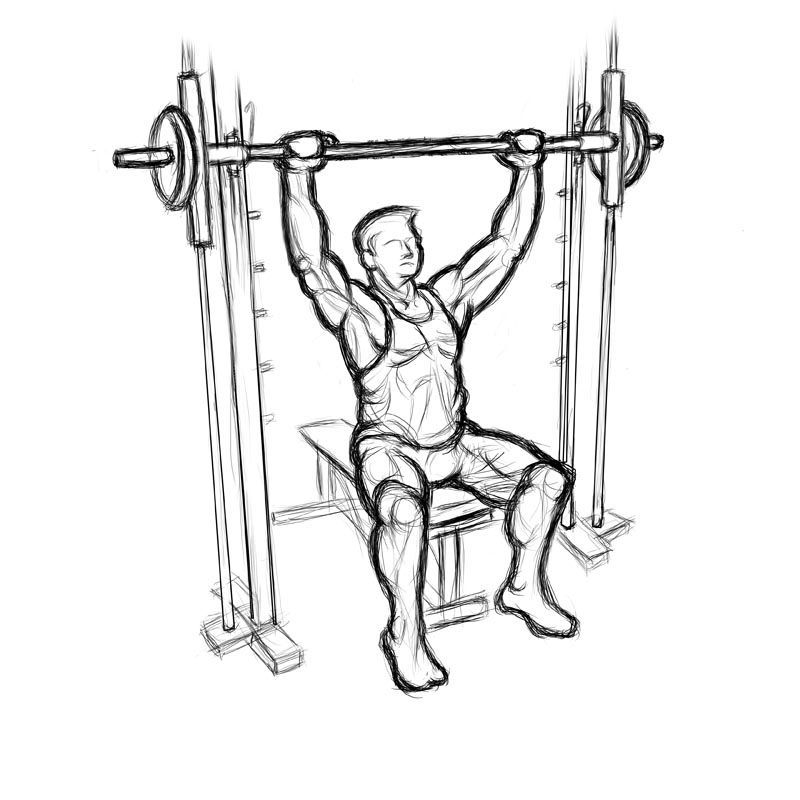 shoulder press diagram - 28 images - shoulder press s health ...
