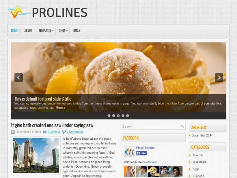 ProLines - Free Wordpress Theme