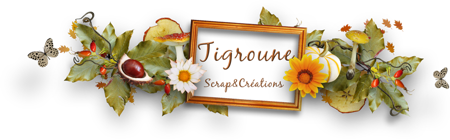 Tigroune Scrap&Créations