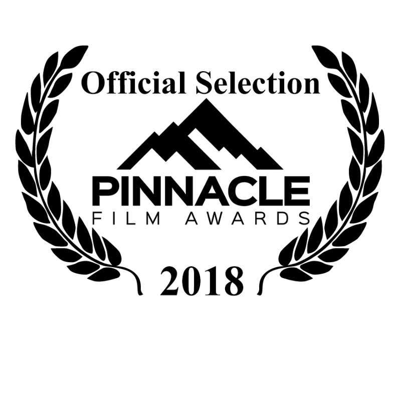 Pinnacle Film Awards Official Selection For Best Narrative Feature - Dual Mania