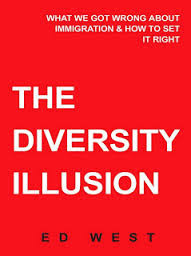Diversity illusion