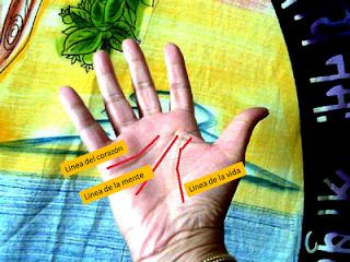 Las tres líneas de la mano