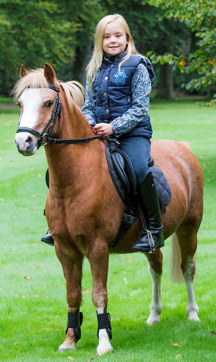 Foto jeroen van der meyde rvd for Paard aan huis te koop