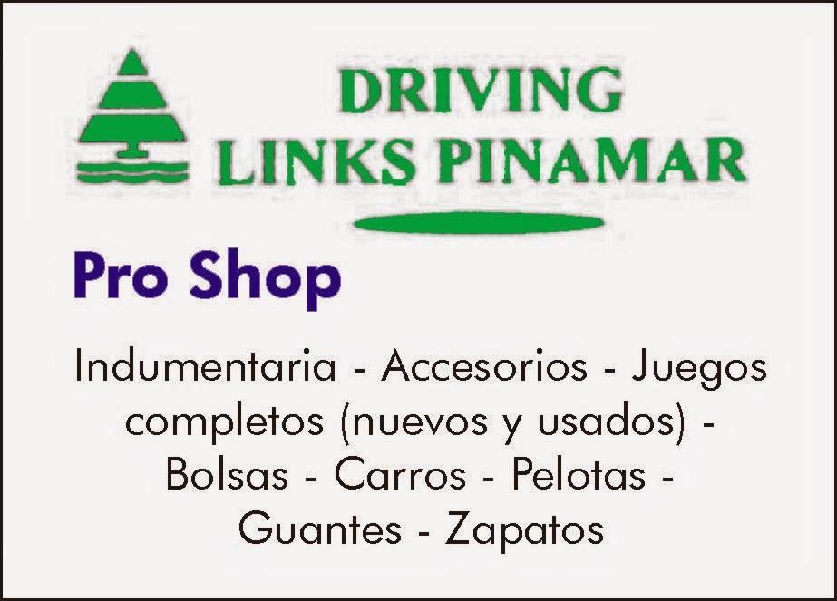 Driving Pinamar