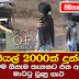 27-Year-Old Woman Caught for Involved in Prostitution in Hambantota