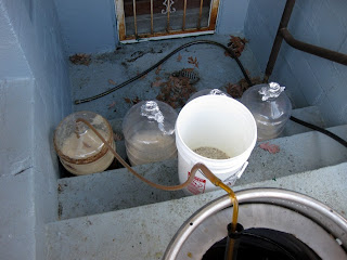 Filling the alternative fermenters.