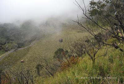 Trek pos 4 gunung lawu