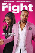 Mr. Right (2015) ()