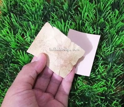 hasil palladio rice paper yang mampu menyerap minyak di wajah