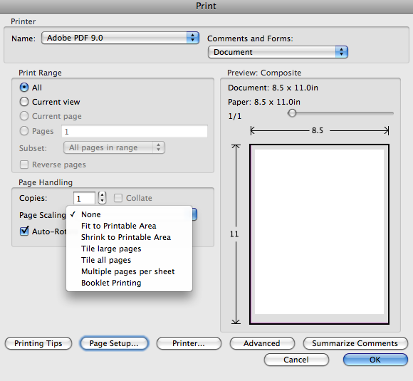 BreierNotes: PDF doesn't print to actual size in Acrobat