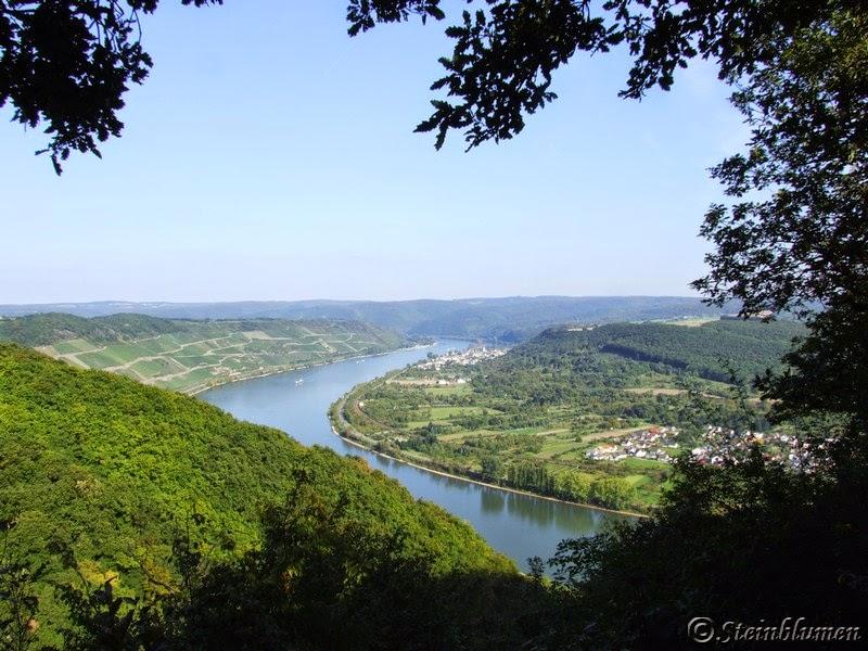 Rheinschleife im Mittelrheintal