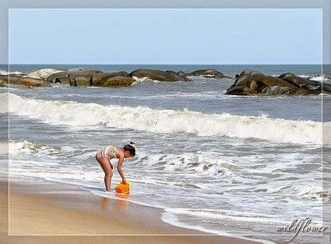 Gió biển, muối biển tốt cho sức khỏe